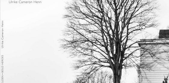 kühne helden bold heroes Hamburg tree baum bäume