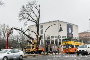 Kühne Helden bold heroes Hamburg