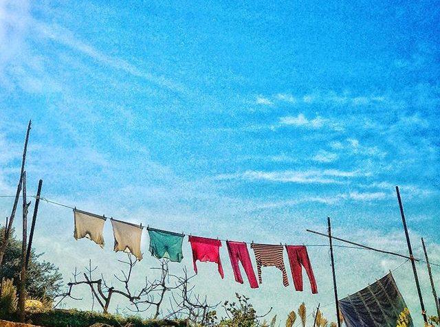 image from Ulrike Cameron Henn Photography blog